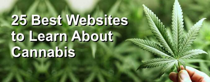 best-cannabis-websites